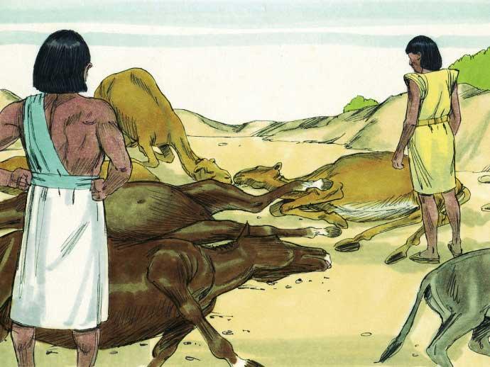 Quinta Praga do Egito: A morte do Gado