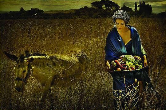 Abigail na Bíblia